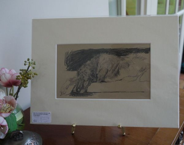 Irish Wolfhound - lying on sofa - IW A1 -   1930's print by Cecil Aldin
